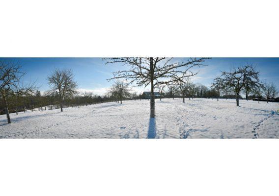 bruyères carré neige pommiers normandie